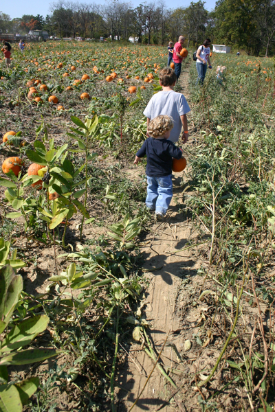 101009 Pumpkin Patch!  - 100